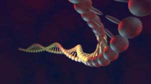 DNK_03