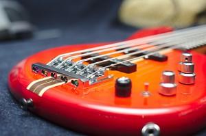 bass egr